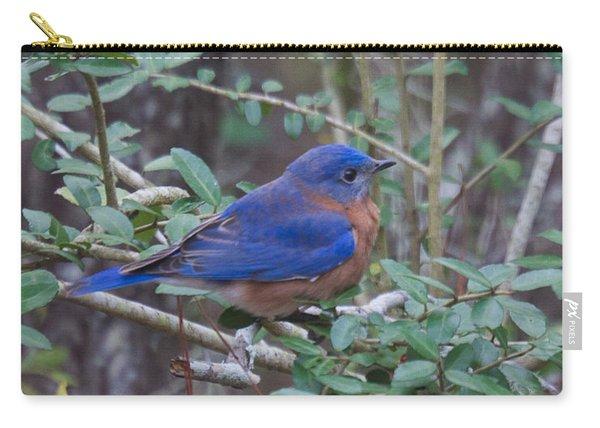 Bluebird Carry-all Pouch