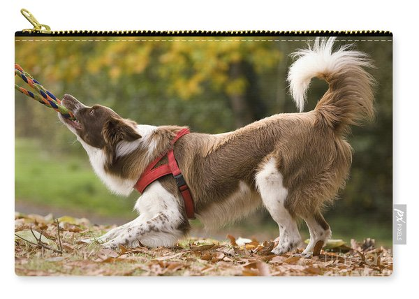 Border Collie Playing Carry-all Pouch