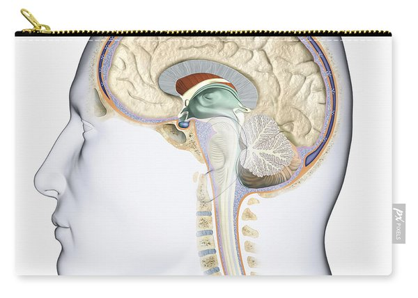 Brain In Cross Section Carry-all Pouch