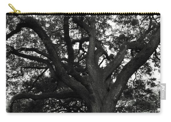Branches Of Life Carry-all Pouch