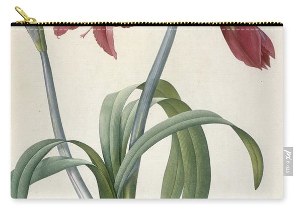 Brazilian Amaryllis Carry-all Pouch