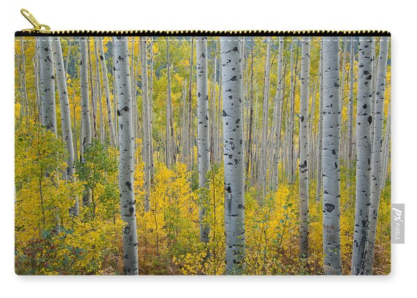 Brilliant Colors Of The Autumn Aspen Forest Carry-all Pouch