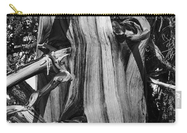 Carry-all Pouch featuring the photograph Bristle-cone Pine-2 by Mae Wertz
