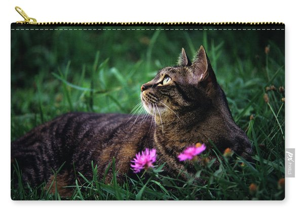 Brown Tabby Cat Lying In The Grass Carry-all Pouch