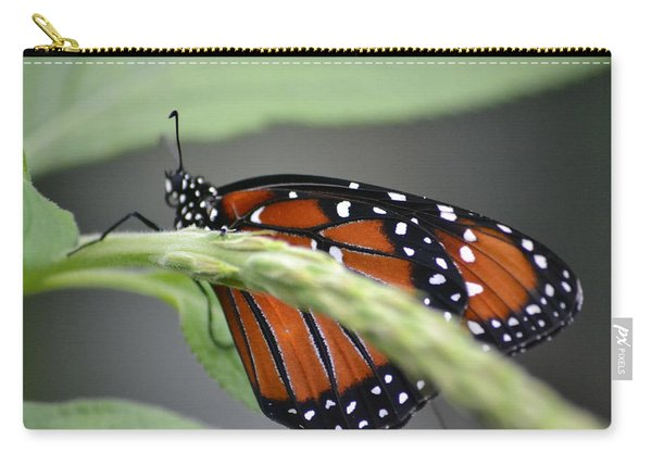 Carry-all Pouch featuring the photograph Butterfly 1 by Michael Colgate