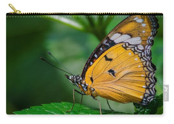 Carry-all Pouch featuring the photograph Butterfly  by Garvin Hunter