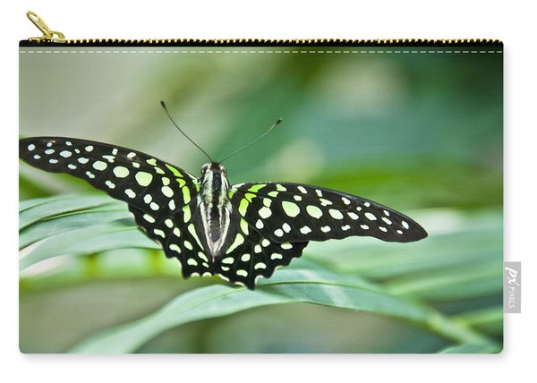 Butterfly Resting Color Carry-all Pouch