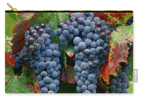 5b6374-cabernet Sauvignon Grapes At Harvest Carry-all Pouch