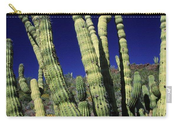 Cacti, Az Usa Carry-all Pouch