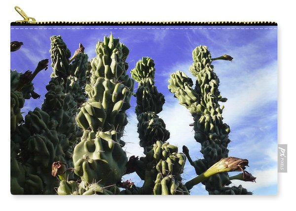 Cactus 2 Carry-all Pouch