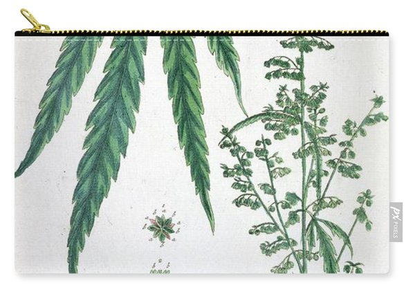 Cannabis Carry-all Pouch