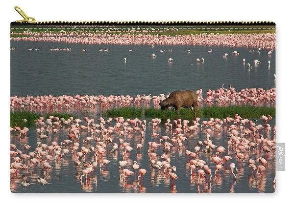 Cape Buffalo And Lesser Flamingos Carry-all Pouch