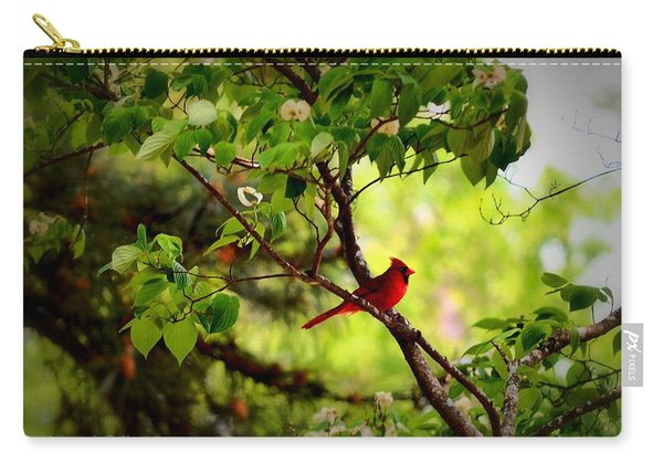 Cardinal In Dogwood Carry-all Pouch