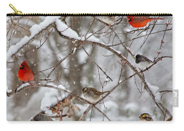 Cardinal Meeting In The Snow Carry-all Pouch