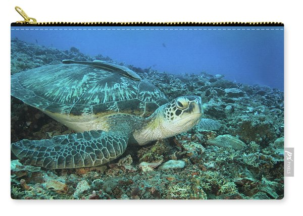 Caretta Resting On Stones Carry-all Pouch