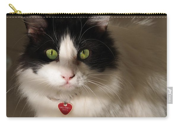 Cat's Eye Carry-all Pouch