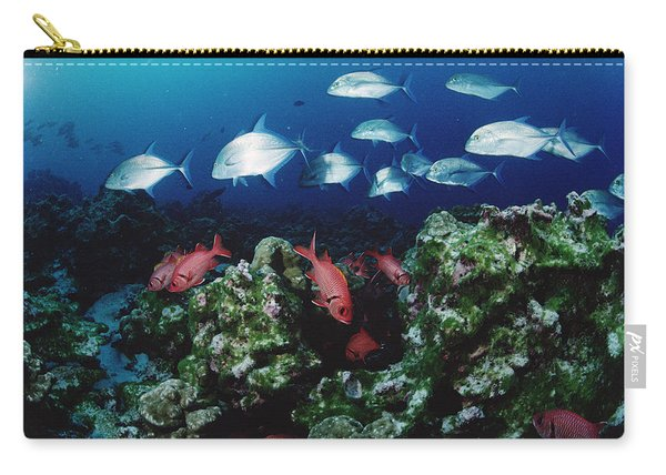 Cavalla And Squirrelfish Schools Cocos Carry-all Pouch