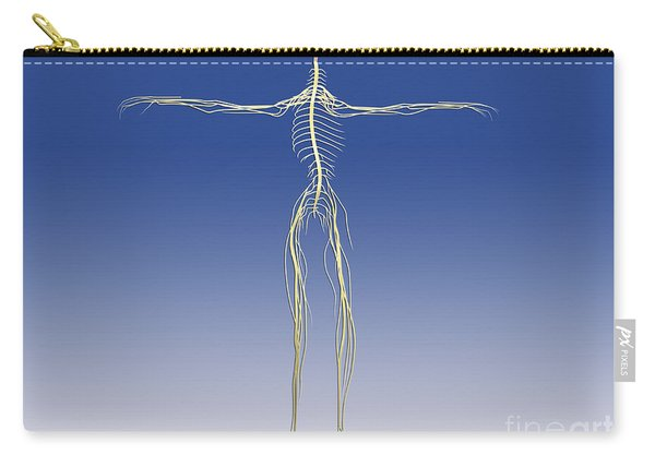 Central Nervous System With Human Brain Carry-all Pouch