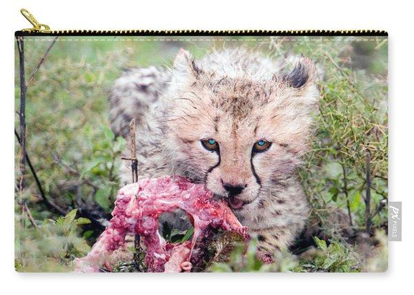 Cheetah Cub Acinonyx Jubatus Eating Carry-all Pouch
