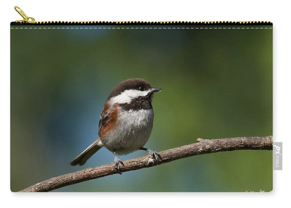 Chestnut Backed Chickadee Perched On A Branch Carry-all Pouch