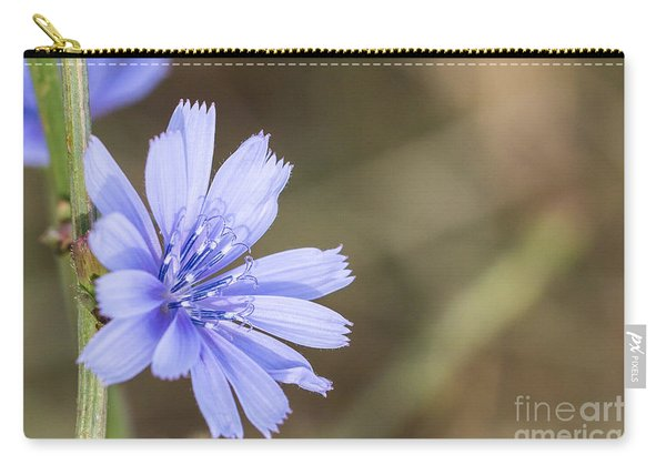 Tenderly Blue Carry-all Pouch