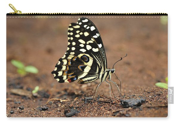 Citrus Butterfly Puddling Jozani Carry-all Pouch