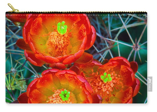 Claret Cup Carry-all Pouch
