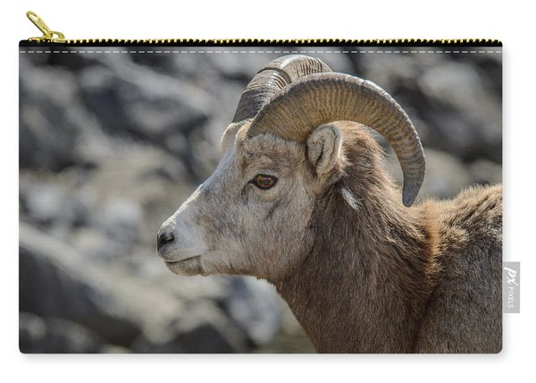 Close Big Horn Sheep  Carry-all Pouch