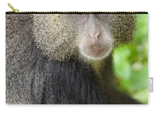 Close-up Of A Blue Monkey Cercopithecus Carry-all Pouch
