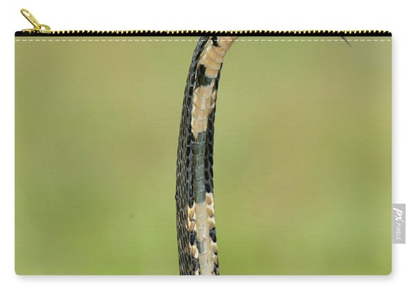 Close-up Of A Forest Cobra Naja Carry-all Pouch