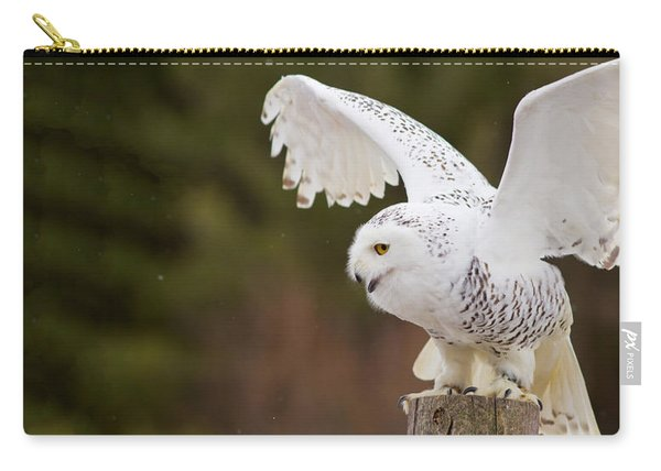 Close-up Of A Snowy Owl Bubo Scandiacus Carry-all Pouch