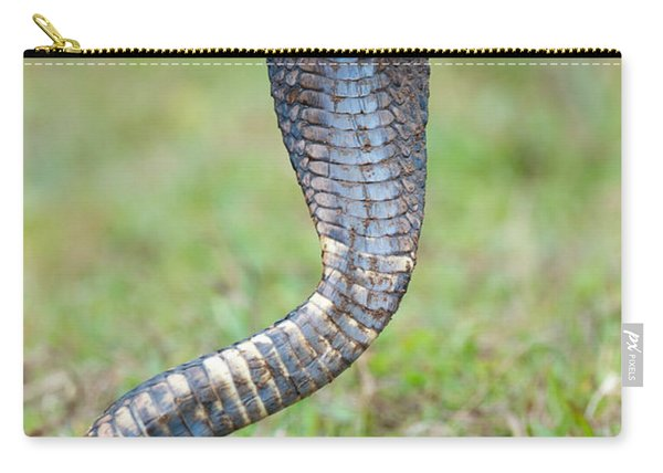 Close-up Of An Egyptian Cobra Heloderma Carry-all Pouch