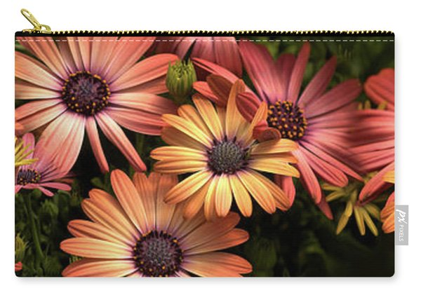 Close-up Of Daisy Flowers In Bloom Carry-all Pouch