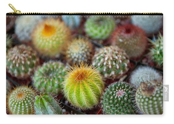 Close-up Of Multi-colored Cacti Carry-all Pouch