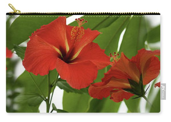 Close-up Of Red Hibiscus Flowers Carry-all Pouch