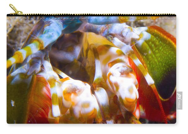 Close-up View Of A Mantis Shrimp Carry-all Pouch