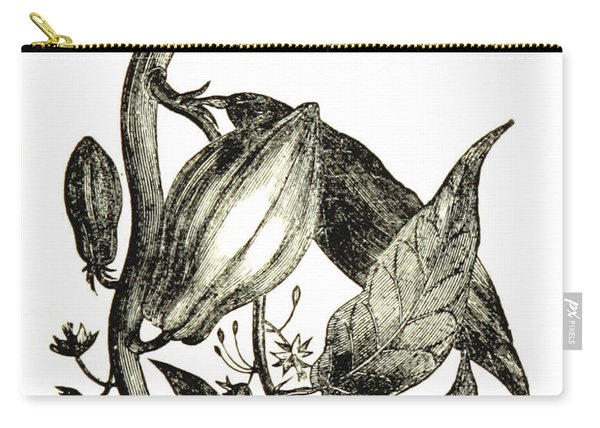 Cocoa Pods, Theobroma Cacao, 1839 Carry-all Pouch
