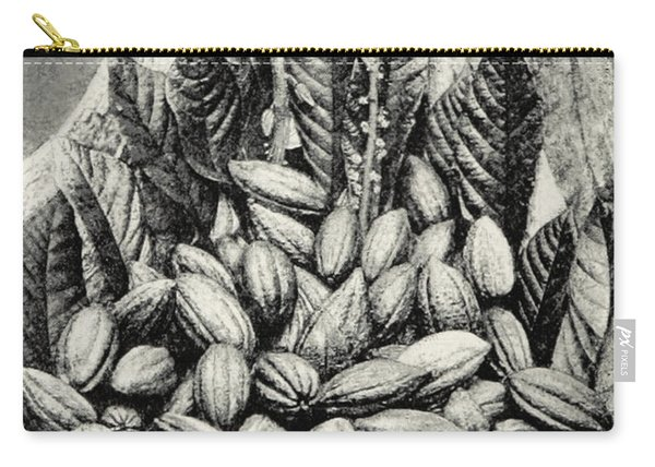 Cocoa Pods, Theobroma Cacao, 1893 Carry-all Pouch