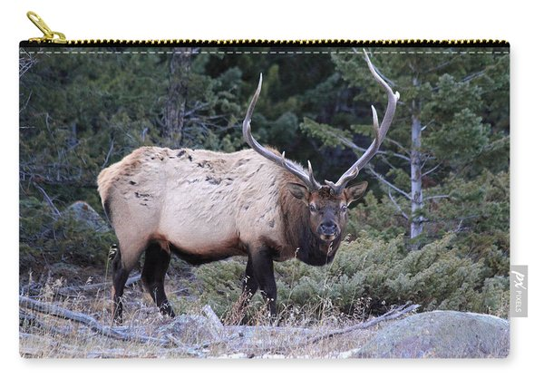 Colorado Bull Elk Carry-all Pouch