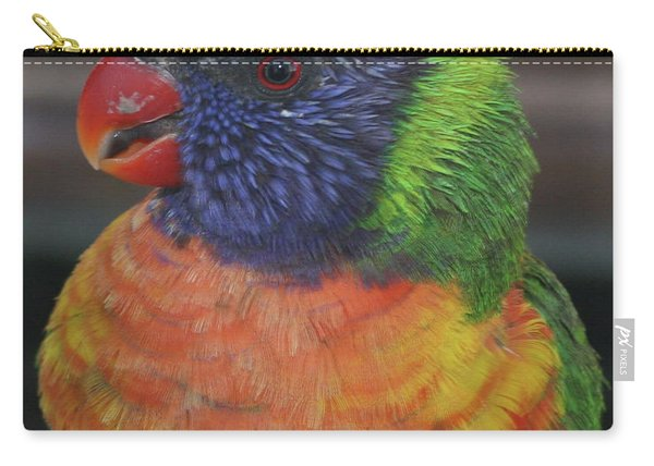 Colored Feathers Carry-all Pouch