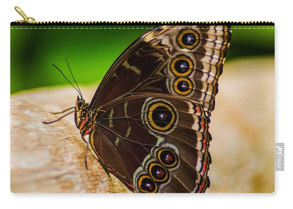 Carry-all Pouch featuring the photograph Colour Display by Garvin Hunter