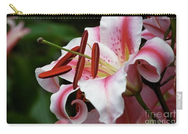 Consider The Lily Carry-all Pouch