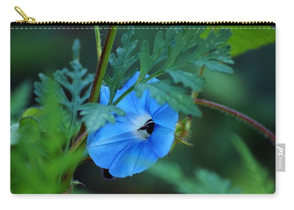 Country Blue Carry-all Pouch