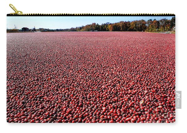 Cranberry Bog In New Jersey Carry-all Pouch
