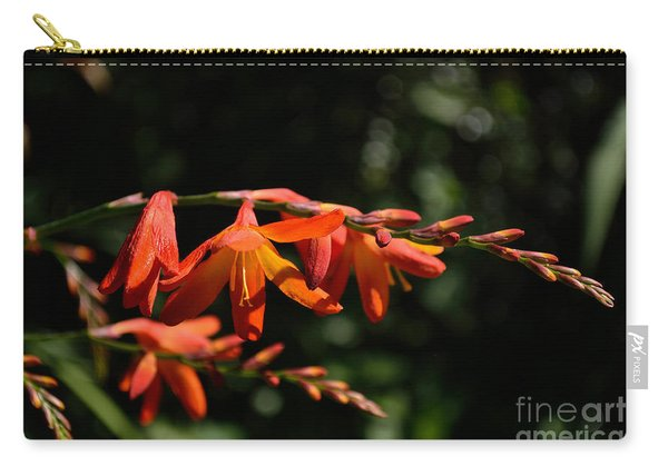 Carry-all Pouch featuring the photograph Crocosmia 'dusky Maiden' Flowers by Scott Lyons