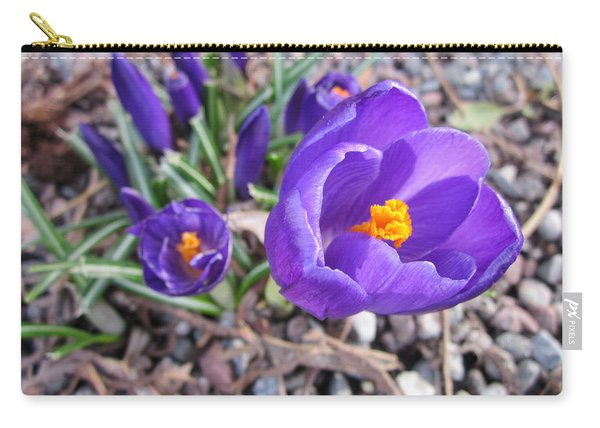 Crocus Sativus Carry-all Pouch
