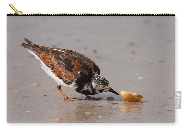Curious Turnstone Carry-all Pouch