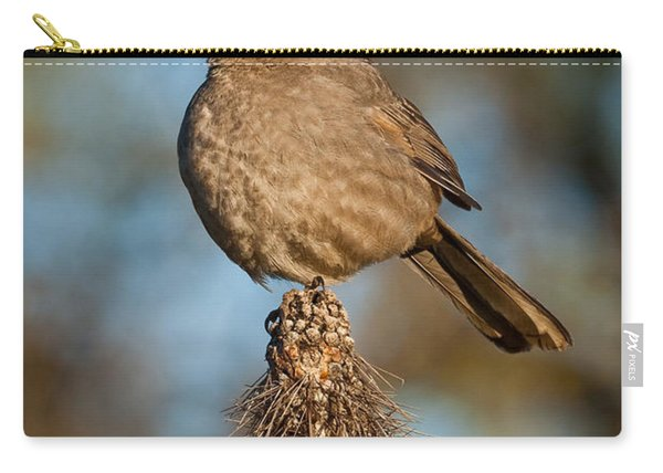 Curve-billed Thrasher On A Cactus Carry-all Pouch