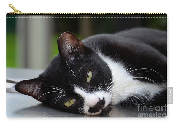 Cute Black And White Tuxedo Cat With Nipped Ear Rests  Carry-all Pouch