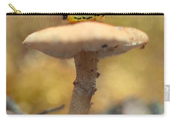 Carry-all Pouch featuring the photograph Daily Excercice by Jaroslaw Blaminsky